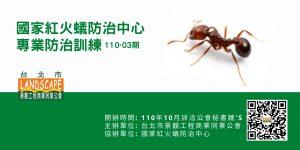防火蟻課程